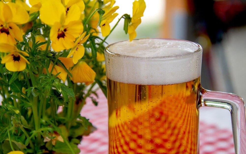 bière-belges-malterie